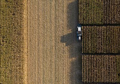 2020 corn harvest at Novelty, MO.  Photo courtesy of Bill Schelp.